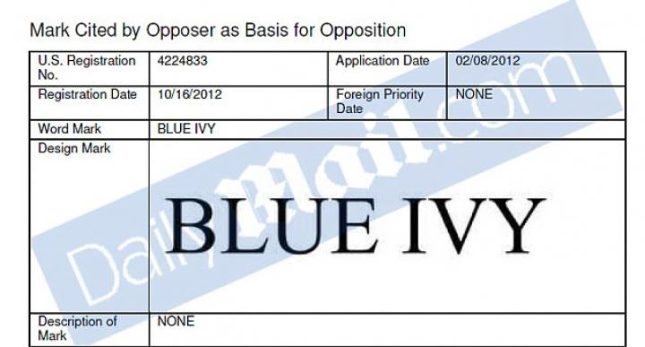 Registro da marca Blue Ivy feito por Beyoncé em 2012 (Foto: Reprodução/Daily Mail)
